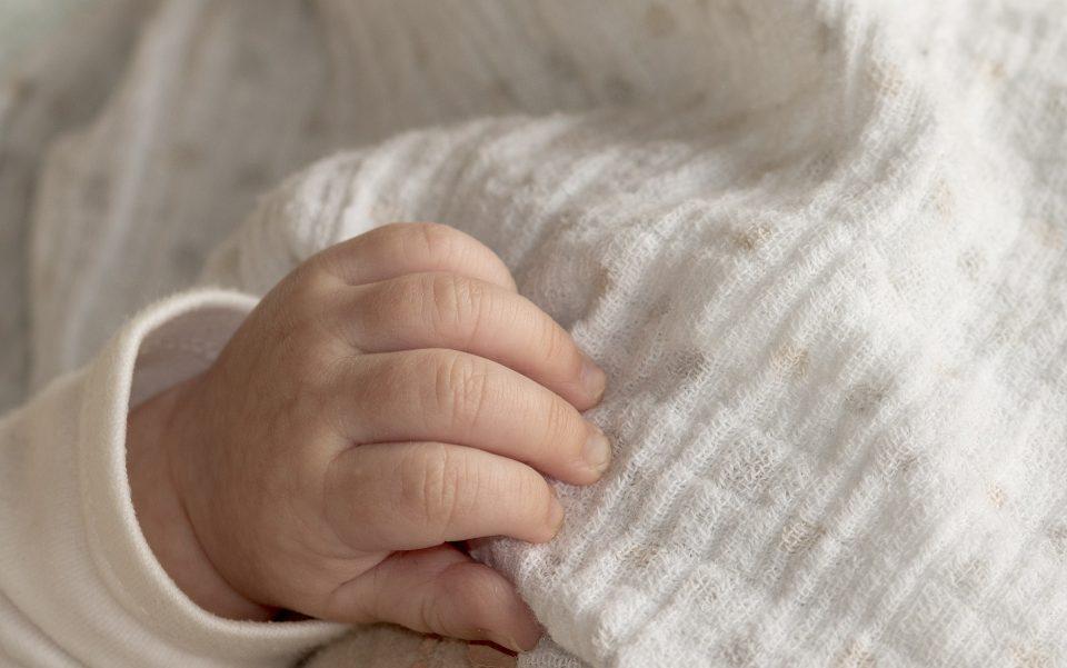 wzrost urodzeń